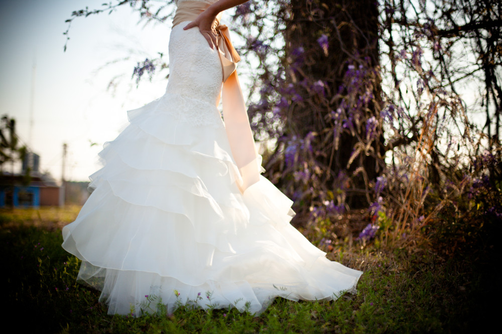 wedding dress from Public Domain Images. dandelionpie.com