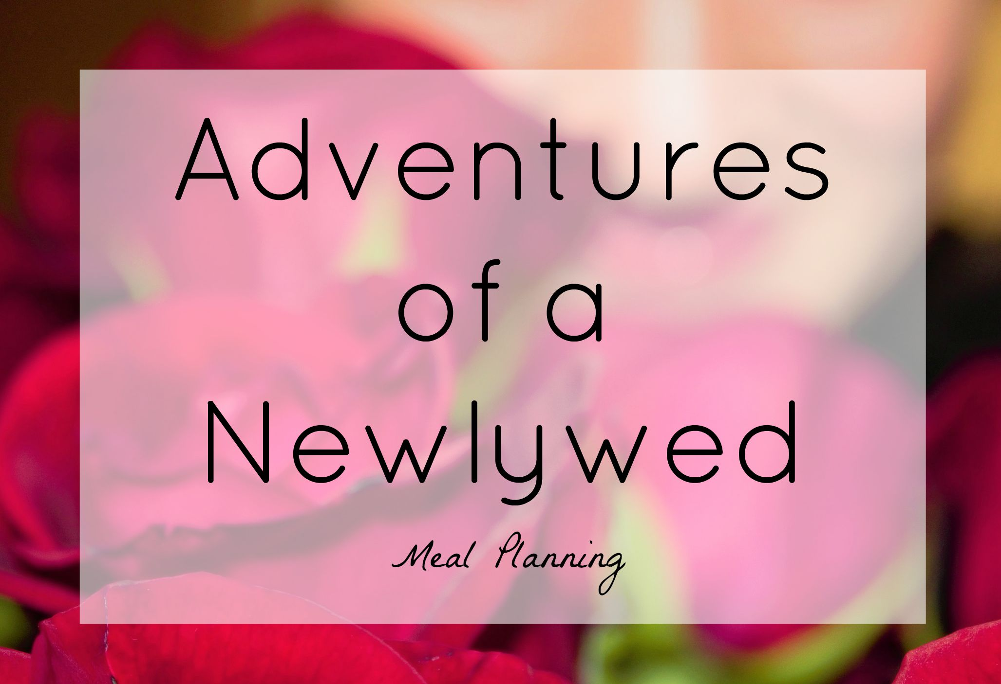 Adventures of a Newlywed: My First Week of Meal Planning