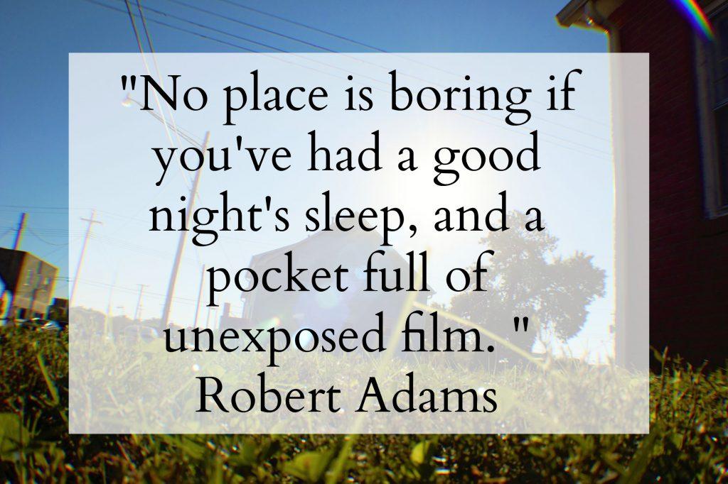Robert Adams #quote // Dandelion Pie