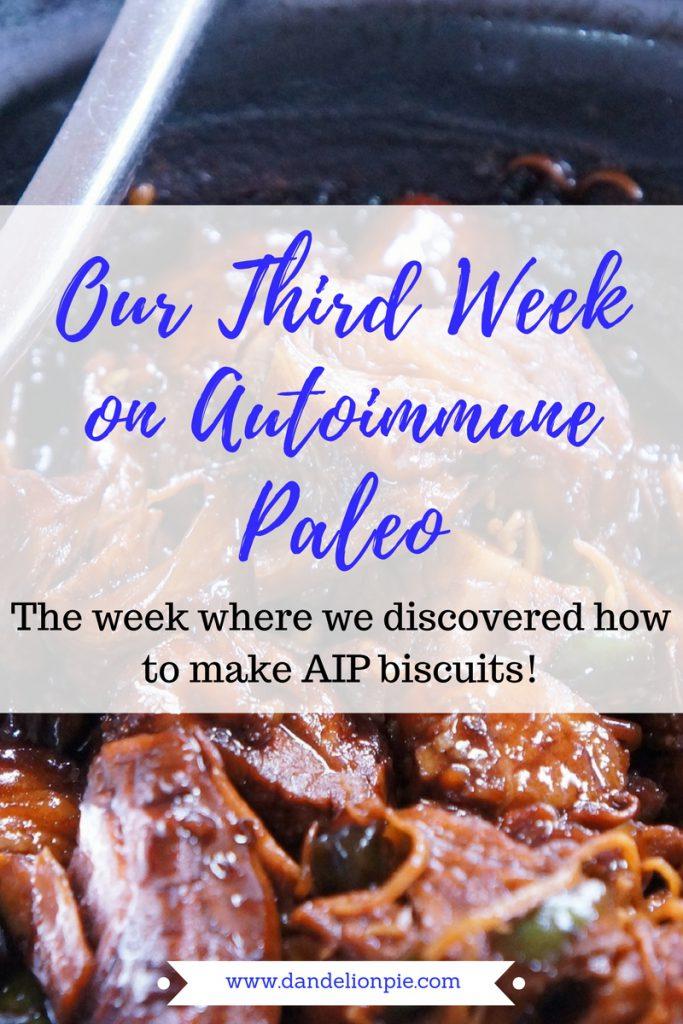 Autoimmune Paleo: Week 3 #aip #autoimmune #paleo
