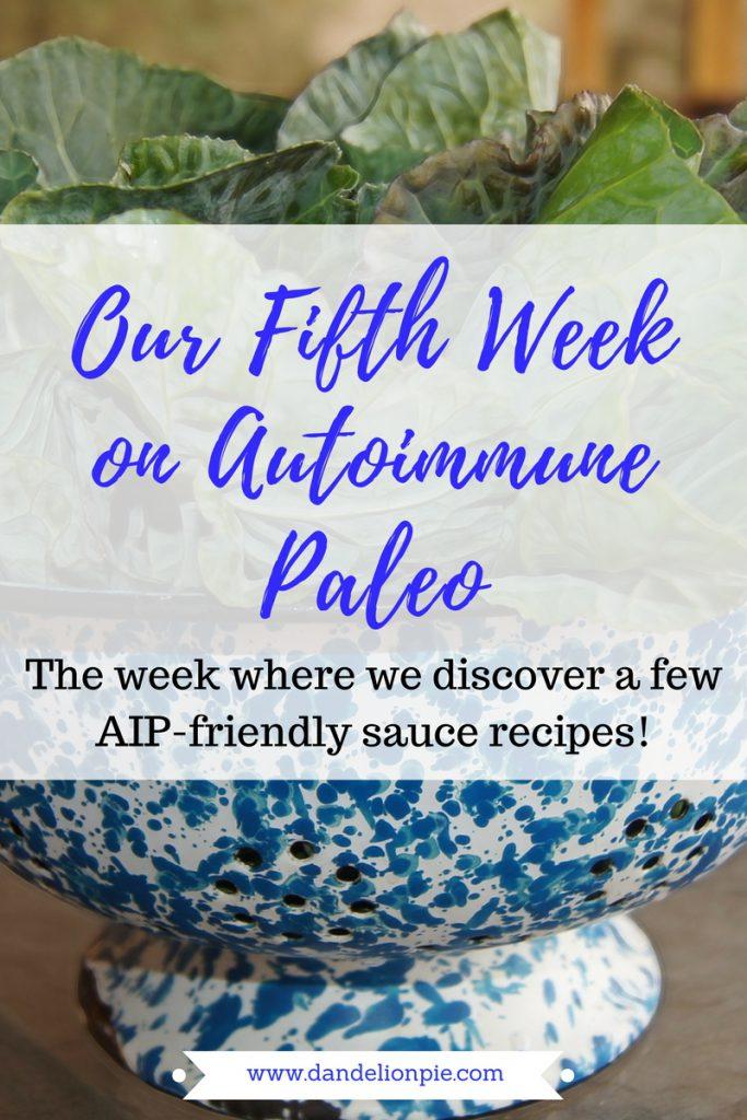 Autoimme Paleo: Week 5