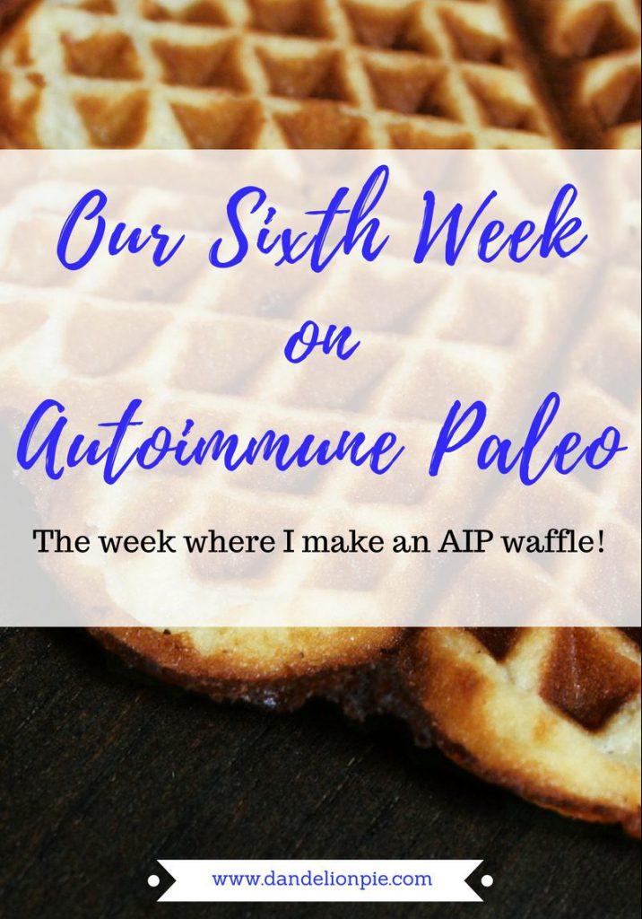 Autoimmune Paleo Week 6 #aip #autoimmune #paleo
