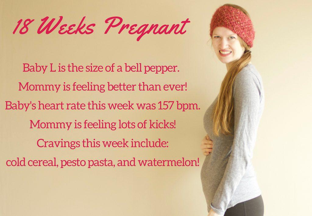 18 Week Bumpdate